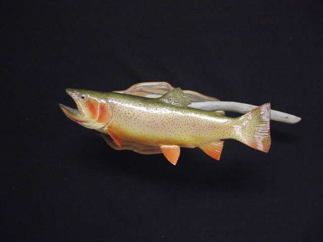 Trout reproductions salmon fish mounts fiberglass replicas for Fiberglass fish replicas