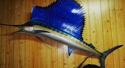 fiberglass reproduction of a sailfish