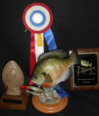 Fish Fiberglass Reproductions, Mounts, Molds & Taxidermy