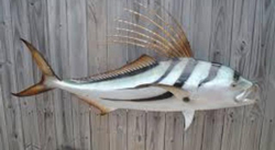 fiberglass replica of a striper with shad
